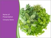 Fresh herbs PowerPoint Template