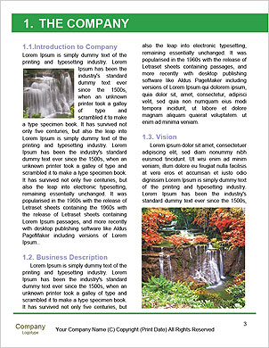 0000092574 Word Template - Page 3