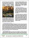 0000092574 Word Templates - Page 4