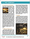 0000092578 Word Template - Page 3