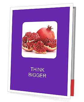 0000092586 Presentation Folder