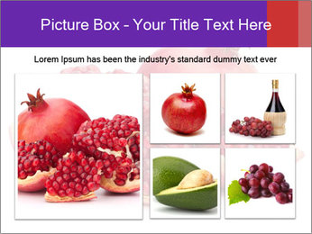 Ripe pomegranate PowerPoint Template - Slide 19
