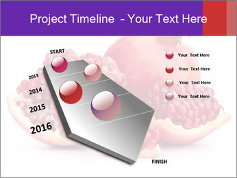 Ripe pomegranate PowerPoint Template - Slide 26