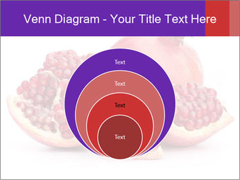 Ripe pomegranate PowerPoint Template - Slide 34