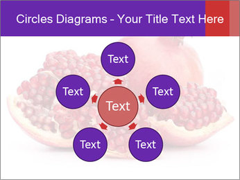 Ripe pomegranate PowerPoint Template - Slide 78