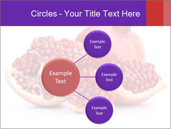 Ripe pomegranate PowerPoint Template - Slide 79