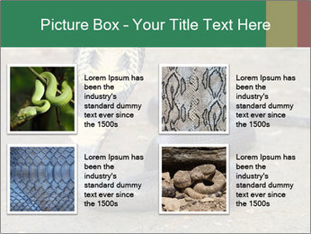 Cobra PowerPoint Template - Slide 14