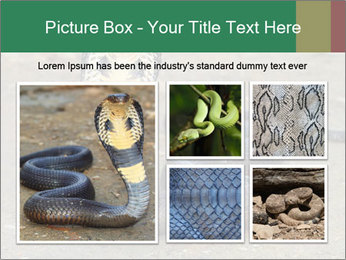 Cobra PowerPoint Template - Slide 19