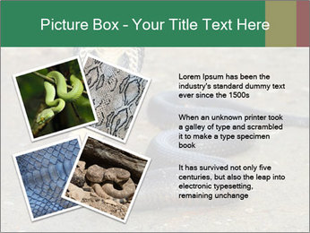 Cobra PowerPoint Template - Slide 23