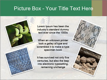 Cobra PowerPoint Template - Slide 24