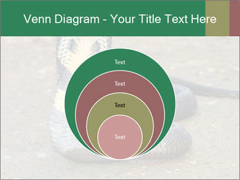 Cobra PowerPoint Template - Slide 34