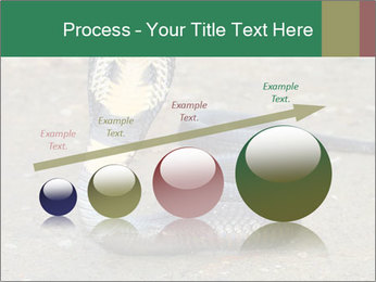 Cobra PowerPoint Template - Slide 87