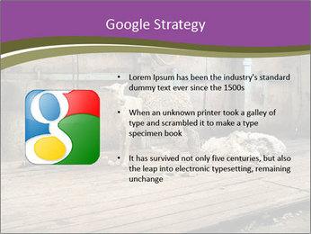 Half shorn sheep PowerPoint Template - Slide 10