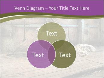 Half shorn sheep PowerPoint Template - Slide 33