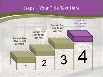Half shorn sheep PowerPoint Template - Slide 64