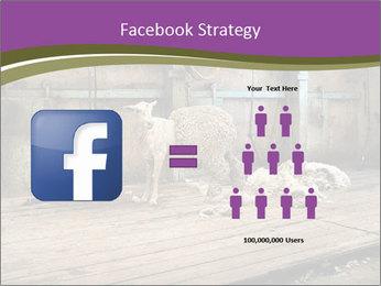 Half shorn sheep PowerPoint Template - Slide 7
