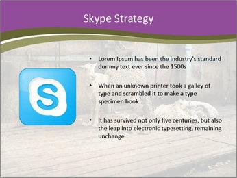 Half shorn sheep PowerPoint Template - Slide 8