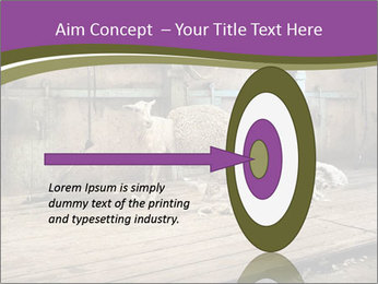Half shorn sheep PowerPoint Template - Slide 83