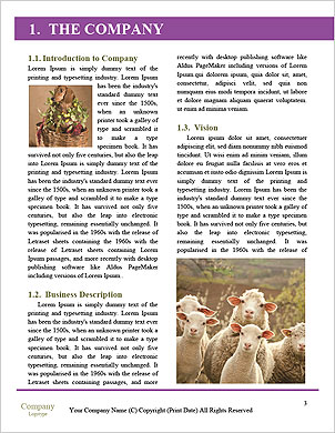 0000092589 Word Template - Page 3