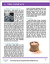 0000092591 Word Template - Page 3
