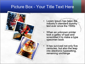 A lonely snowman PowerPoint Template - Slide 17