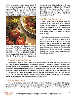 0000092603 Word Template - Page 4