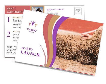 0000092604 Postcard Templates