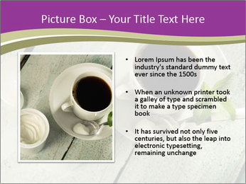 White stevia PowerPoint Template - Slide 13