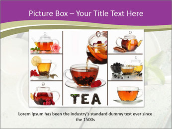 White stevia PowerPoint Template - Slide 15