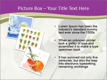 White stevia PowerPoint Template - Slide 17