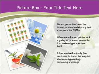 White stevia PowerPoint Template - Slide 23