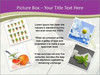 White stevia PowerPoint Template - Slide 24