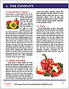0000092610 Word Templates - Page 3