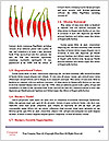 0000092610 Word Templates - Page 4