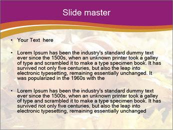 Halloween pumpkin PowerPoint Template - Slide 2