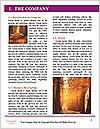 0000092615 Word Template - Page 3