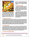 0000092615 Word Templates - Page 4