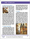0000092616 Word Template - Page 3