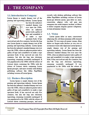 0000092617 Word Template - Page 3