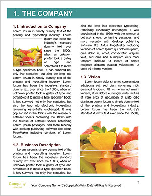 0000092620 Word Template - Page 3