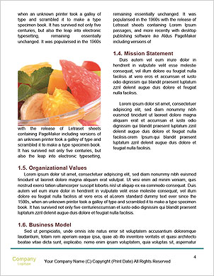 0000092620 Word Template - Page 4