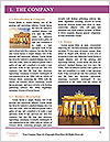 0000092621 Word Template - Page 3