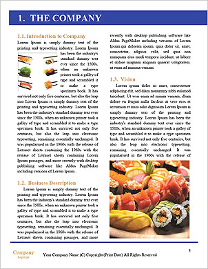 0000092636 Word Template - Page 3
