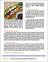 0000092636 Word Template - Page 4