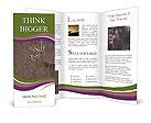0000092639 Brochure Templates