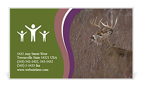 0000092639 Business Card Template