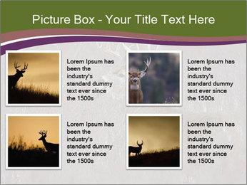 Deer PowerPoint Template - Slide 14