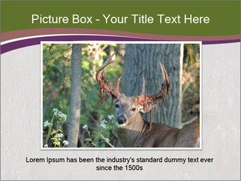 Deer PowerPoint Template - Slide 16