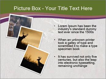 Deer PowerPoint Template - Slide 17