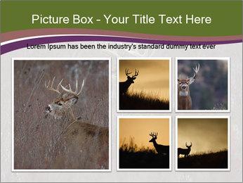 Deer PowerPoint Template - Slide 19
